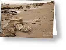 Rocky Shore Greeting Card by Amanda Barcon