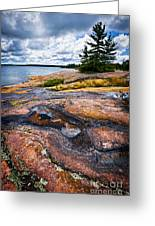 Rocky Shore Of Georgian Bay Greeting Card by Elena Elisseeva