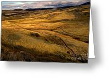 Rolling Hills Greeting Card by Robert Bales