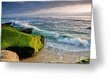 Rolling In Greeting Card by Peter Tellone
