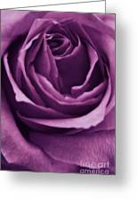 Romance IIi Greeting Card by Angela Doelling AD DESIGN Photo and PhotoArt