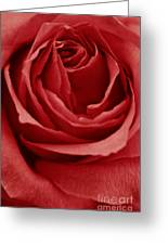 Romance IIII Greeting Card by Angela Doelling AD DESIGN Photo and PhotoArt