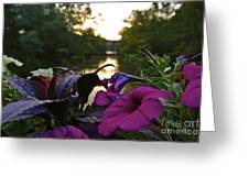 Romantic River View Greeting Card by Customikes Fun Photography and Film Aka K Mikael Wallin
