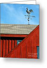 Rooster Weathervane Greeting Card by Sabrina L Ryan