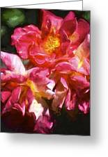 Rose 115 Greeting Card by Pamela Cooper