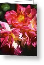 Rose 115 Greeting Card by Pamela Cooper