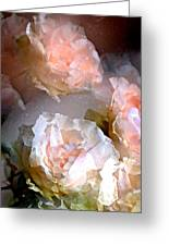 Rose 154 Greeting Card by Pamela Cooper