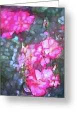 Rose 188 Greeting Card by Pamela Cooper