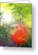 Rose 190 Greeting Card by Pamela Cooper