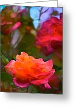 Rose 191 Greeting Card by Pamela Cooper