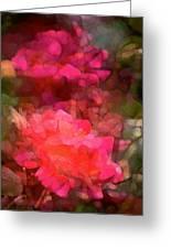 Rose 198 Greeting Card by Pamela Cooper