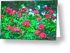Rose 201 Greeting Card by Pamela Cooper