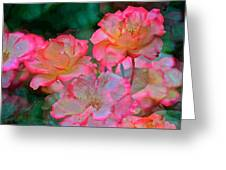 Rose 203 Greeting Card by Pamela Cooper