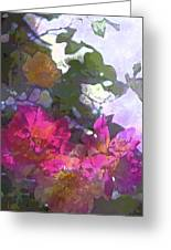 Rose 206 Greeting Card by Pamela Cooper