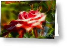 Rose 6168-fractal Greeting Card by Gary Gingrich Galleries