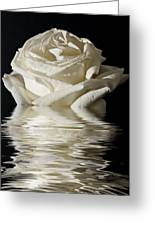 Rose Flood Greeting Card by Steve Purnell