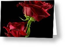 Rose Of Love Greeting Card by Wobblymol Davis