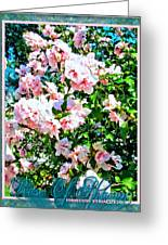 Rose Of Sharon -hibiscus Syriacus Greeting Card by Margaret Newcomb