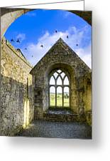 Ross Errilly Friary - Irish Monastic Ruins Greeting Card by Mark Tisdale