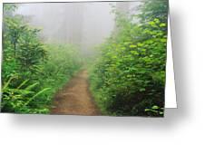 Route 1 In Northern California Greeting Card by Joseph Sohm ChromoSohm Media Inc