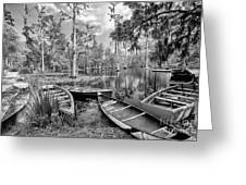 Row Boats In Cypress Tree Swamp IIi Greeting Card by Dan Carmichael