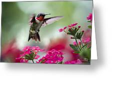 Ruby Garden Jewel Greeting Card by Christina Rollo