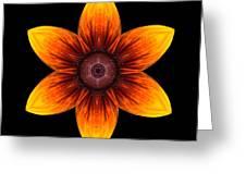 Rudbeckia I Flower Mandala Greeting Card by David J Bookbinder