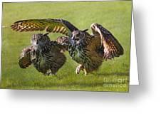 Run For The Bread Greeting Card by Wobblymol Davis
