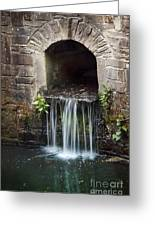 Running Water Greeting Card by Svetlana Sewell