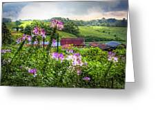Rural Garden Greeting Card by Debra and Dave Vanderlaan