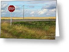 Rural Stop Sign On The Prairies  Greeting Card by Sandra Cunningham