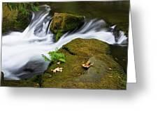 Rushing Water At Whatcom Falls Park Greeting Card by Priya Ghose