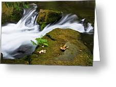 Rushing Water At Whatcom Falls Park Greeting Card by Priya Ghose