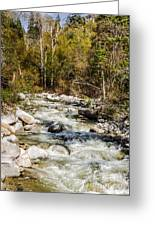 Rushing Water Greeting Card by Sue Smith
