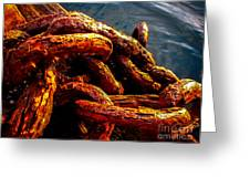 Rust Greeting Card by Robert Bales