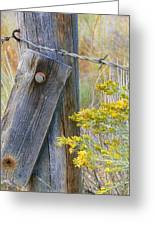Rustic Fence And Wild Flowers Montana Greeting Card by Jennie Marie Schell