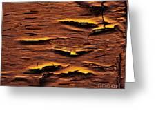 Rustic Peeling Greeting Card by Marsha Heiken
