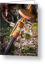 Rusty Bike Bumper Greeting Card by Sonja Quintero
