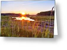Rye Marsh Sunset Greeting Card by Eric Gendron