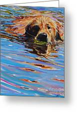 Sadie Has A Ball Greeting Card by Molly Poole