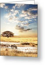 Safari Greeting Card by Boon Mee