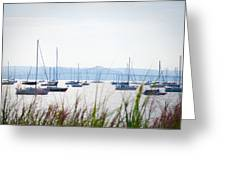 Sailboats At Rest Greeting Card by Bill Cannon