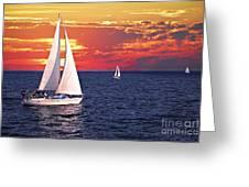 Sailboats at sunset Greeting Card by Elena Elisseeva