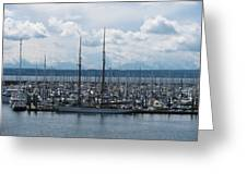 Sailboats In Seattle Greeting Card by Steven Parker