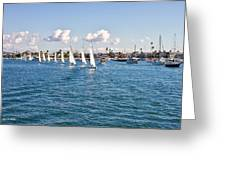 Sailing Greeting Card by Angela A Stanton