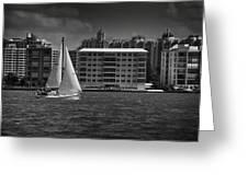 Sailing Away  Greeting Card by Mario Celzner