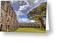 Salisbury Cathederal Cloisters Greeting Card by David Dwight