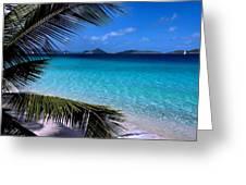 Saloman Beach - St. John Greeting Card by Stephen  Vecchiotti