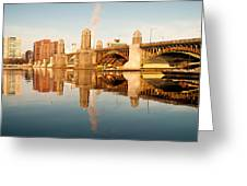 Salt-and-pepper Bridge Greeting Card by Lee Costa