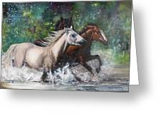 Salt River Horseplay Greeting Card by Karen Kennedy Chatham